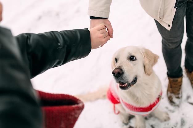 Matrimonio joven cogidos de la mano junto al perro sentado en la nieve.