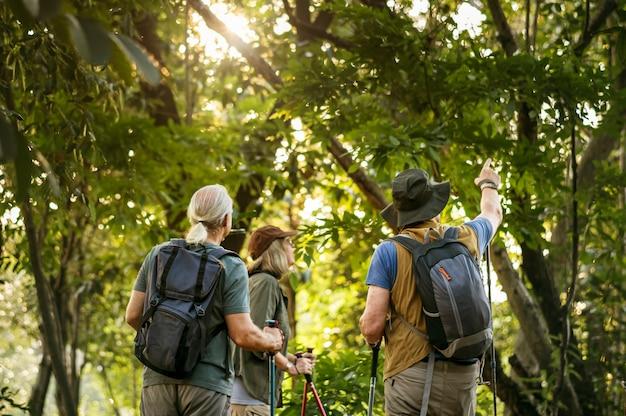 Mayores trekking en un bosque