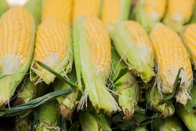 Mazorca de maíz entre las hojas verdes. maíz fresco dulce en el mercado de los agricultores. detalle de maíz hervido dulce en el mercado
