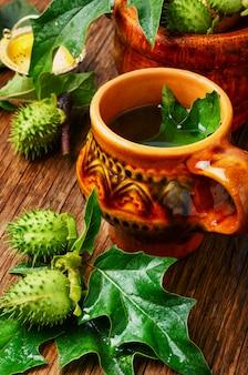 Medicina de hierbas naturales, datura