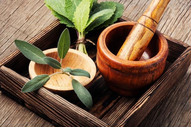 Medicina natural y hierbas
