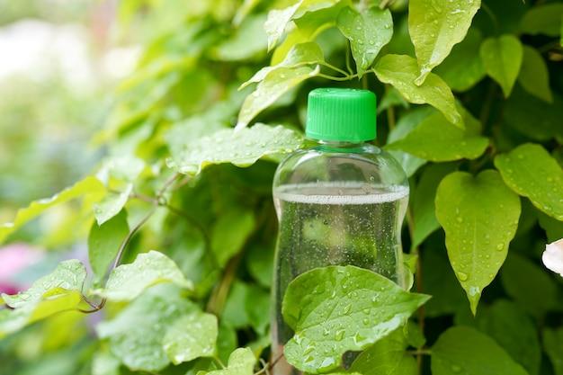 Medicina natural o cosmética. botella en hojas verdes.