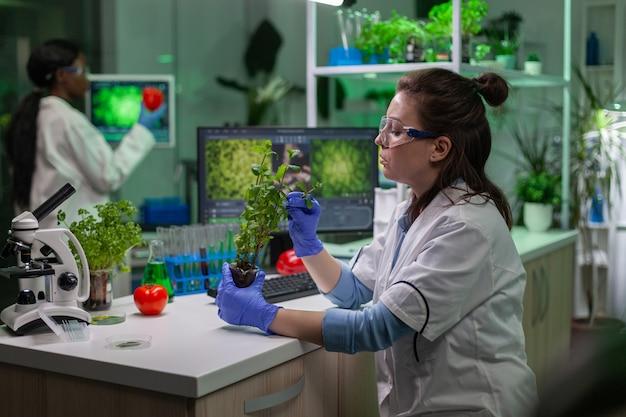Médico científico biólogo que examina el árbol joven mientras escribe en la experiencia de la ecología del teclado