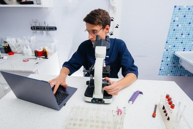 Un médico en el laboratorio estudia virus y bacterias bajo un microscopio. investigación de virus y bacterias peligrosos.