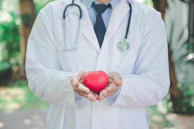 Los médicos invitan al examen de enfermedades del corazón todos los años. - se puede utilizar para mostrar sus productos o promocional.