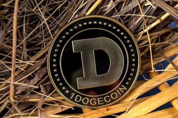 Medios de pago de criptomonedas dogecoin doge en el sector financiero