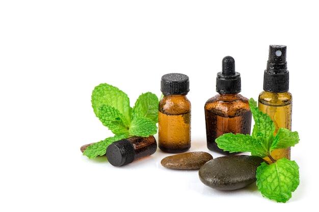Menta de cocina o hojas de menta verde de pantano y extraídas en la botella aislada sobre fondo blanco.