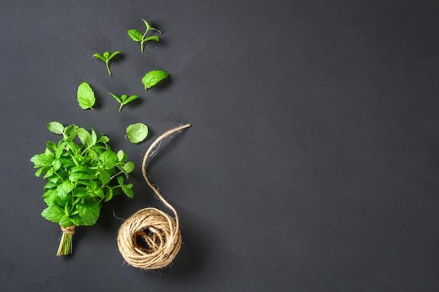 Menta verde casera fresca