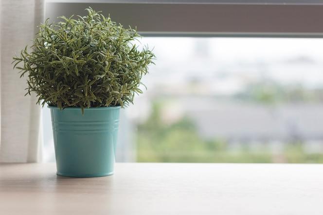 Mesa de madera con pequeña planta verde en macetas en la ventana