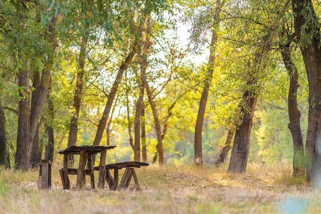 Una mesa y dos bancos de una casa de madera en bruto. área de recreación en el bosque.