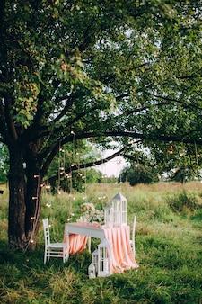 Mesa festiva bellamente decorada en el parque al atardecer.