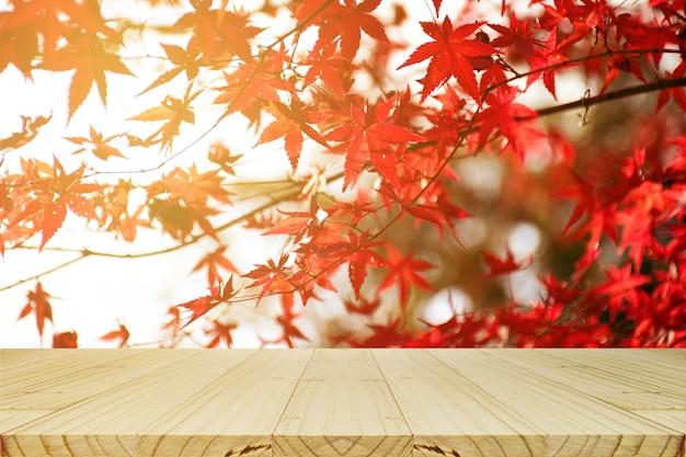 Mesa de picnic con jardín de árbol de arce japonés en otoño.