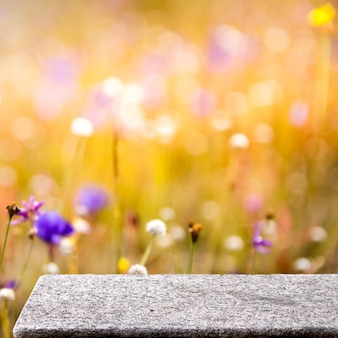 Mesa de piedra en el jardín al aire libre, amarillo, naturaleza, luz solar, fondo de pantalla cuadrada