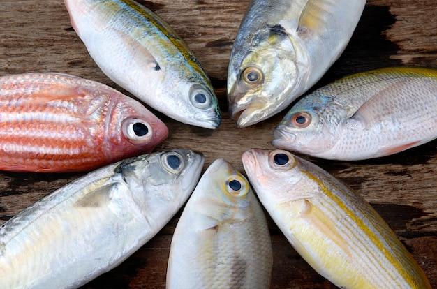 Mezcle coloridos peces frescos