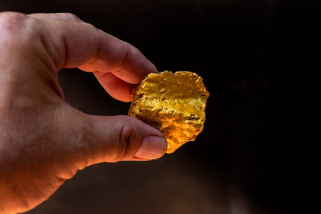 Mineral de oro puro encontrado en la mina está en la mano