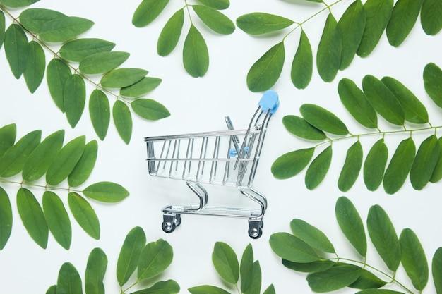 Mini carro de la compra entre hojas verdes sobre fondo blanco.
