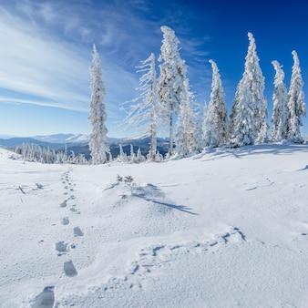 Misterioso paisaje invernal majestuosas montañas