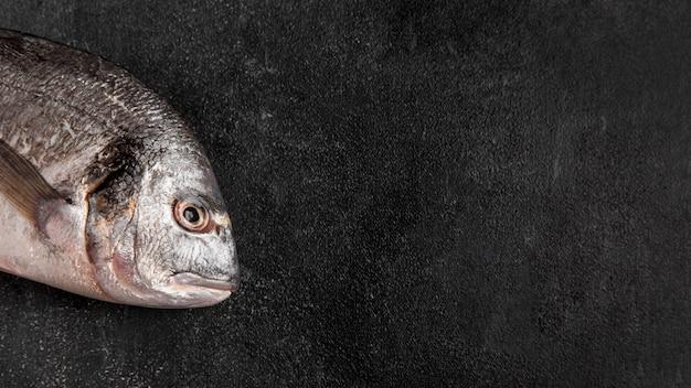 La mitad del espacio de copia de pescado
