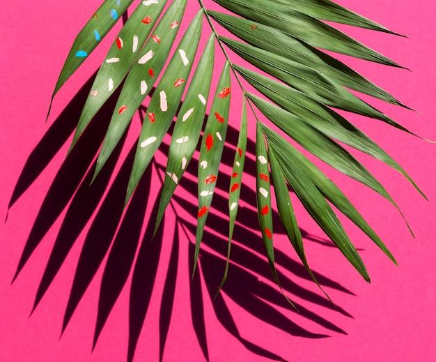 La mitad de la hoja de helecho con sombra sobre fondo rosa