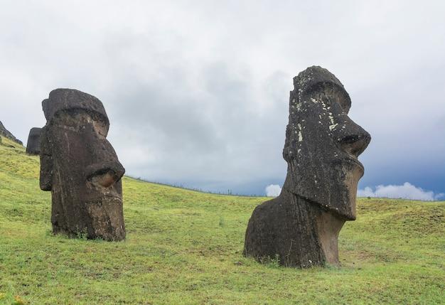 Moais en rano raraku, isla de pascua, rapa nui.