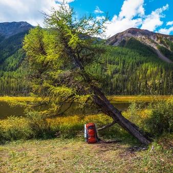 Mochila turística naranja grande debajo de un árbol otoñal en la orilla del lago. una parada turística. tiempo de descanso, concepto de vida de camping.