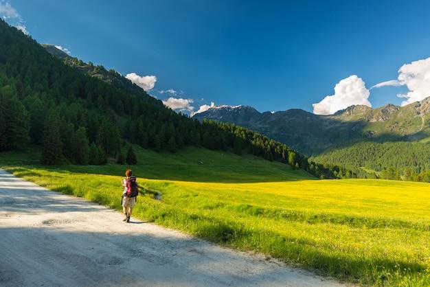 Mochilero senderismo en un paisaje idílico. aventuras de verano y exploración en los alpes, a través de una pradera floreciente y un bosque verde en medio de una cordillera de gran altitud al atardecer