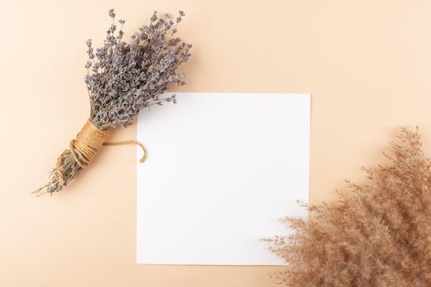 Mocup sobre un fondo beige. hermosas plantas, espacios en blanco vacíos para el texto.