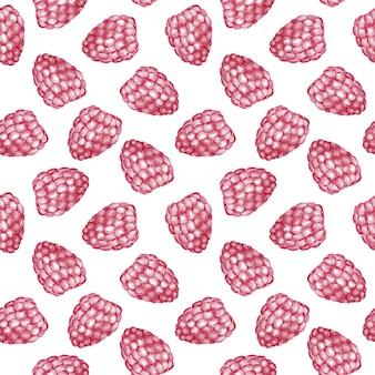 Modelo inconsútil de la frambuesa dulce. ilustración acuarela
