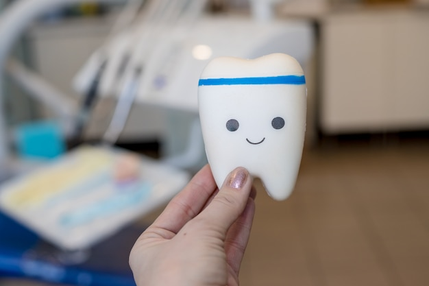 Modelo de juguete de diente con cara bonita.modelo de ortodoncia y herramienta de dentista - modelo de dientes de demostración de variedades de brackets o brackets de ortodoncia. diente saludable. concepto de alimentación saludable visita dental