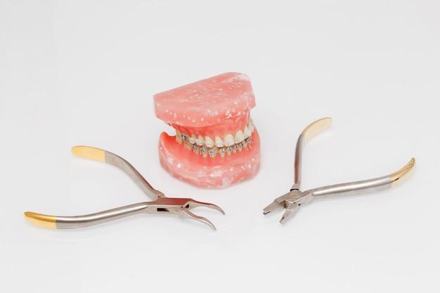 Modelo de ortodoncia y conjunto de herramientas médicas de ortodoncia metálica.