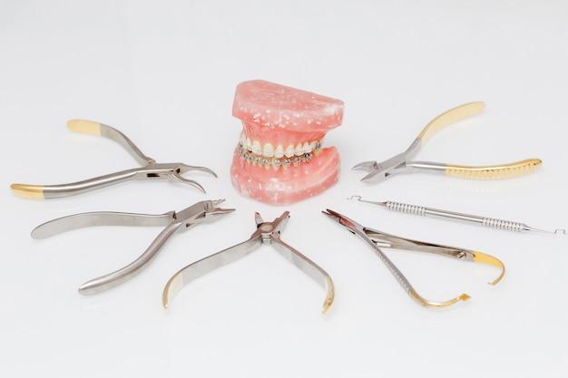 Modelo de ortodoncia y conjunto de herramientas metálicas de ortodoncia médica.