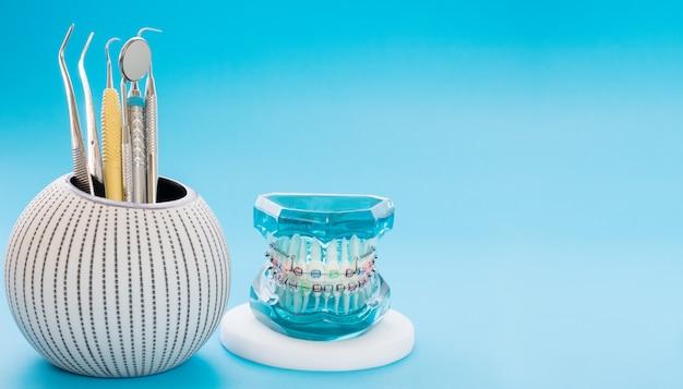 Modelo de ortodoncia y herramienta de dentista: modelo de demostración de dientes de diversas variedades de brackets o corsé de ortodoncia