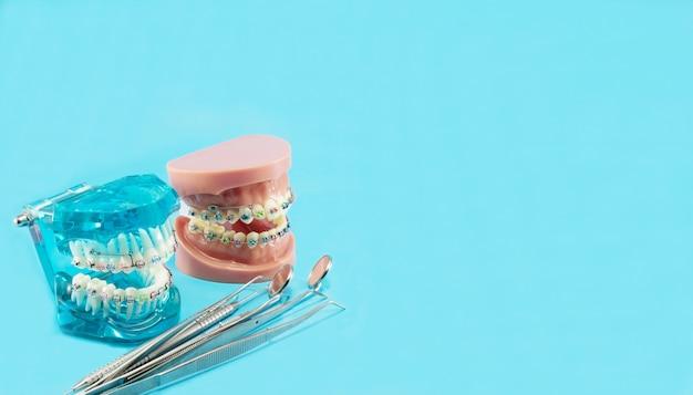Modelo de ortodoncia y herramienta de dentista.