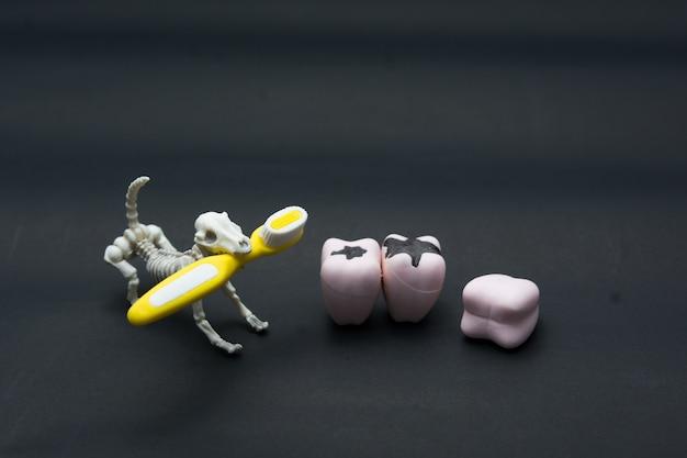 Modelos de dientes de diferentes mandíbulas humanas con esqueleto y perro, concepto de dientes de halloween.