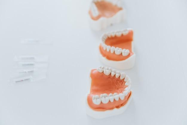 Modelos de mandíbulas de plástico para estomatología y cirugía maxilofacial
