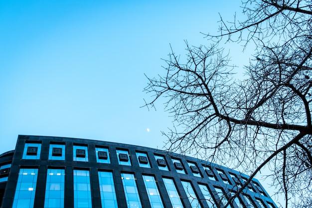 Moderno edificio de oficinas con ramas de árboles que lo enmarcan y tonos frescos, concepto de negocio