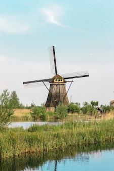 Molinos de viento holandeses tradicionales con pasto verde en primer plano
