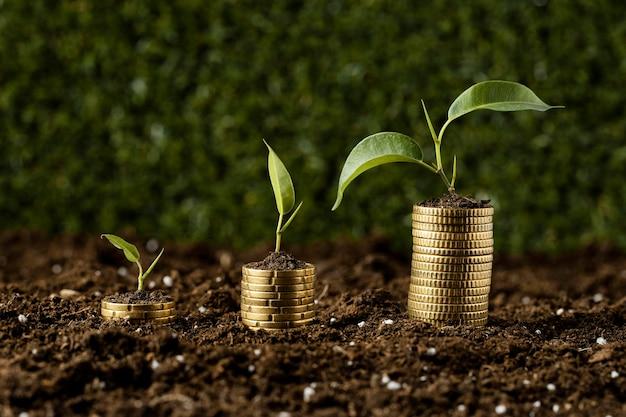 Monedas apiladas sobre tierra con plantas