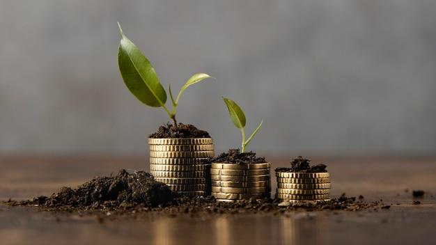 Monedas apiladas con tierra y planta.