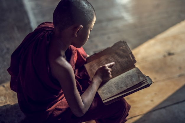 Monje novicio budista joven leyendo y estudiando en monasterio, myanmar