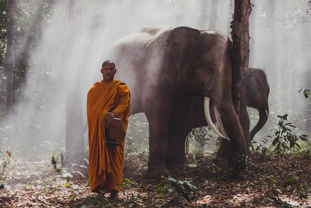 Monjes tailandeses caminando en la selva con elefantes