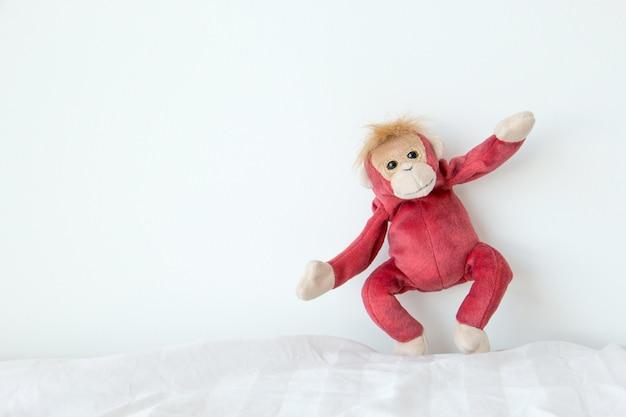 Mono feliz en el fondo blanco.