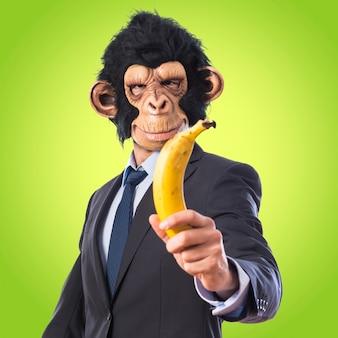 Mono hombre sosteniendo un plátano sobre fondo de colores