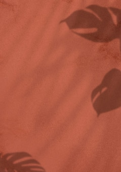 Monstera deja sombra sobre fondo marrón