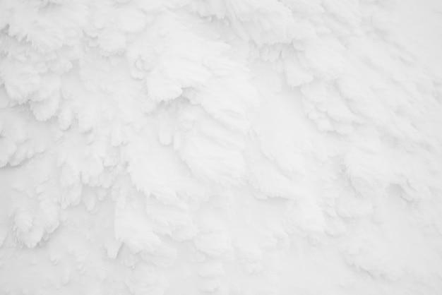 Monstruos de nieve zona montaña zao, japón.
