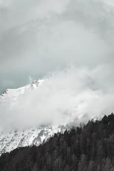Montaña blanca y negra