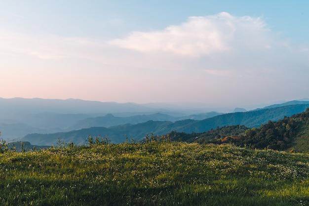 Montañas y árboles verdes durante el día.