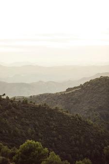 Montañas de bosque con cielo blanco