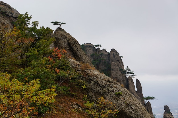 Montañas con bosque en el día de otoño, crimea