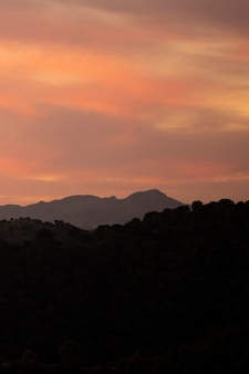 Montañas y bosque con sol hermoso